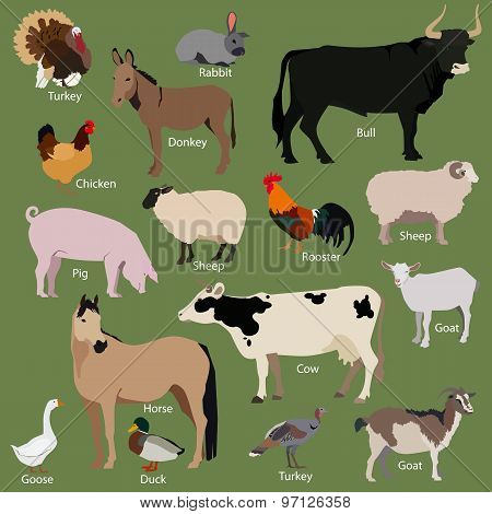 Set of farm animals icons. Flat style design.