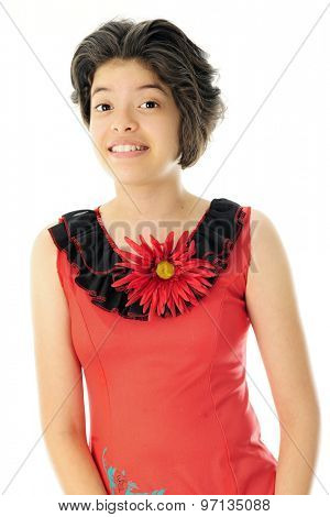 A beautiful young Hispanic teen happily wearing a red  mexican dress with black neck ruffles and a giant red flower.  On a white background.