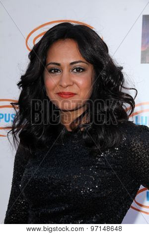LOS ANGELES - JUN 6:  Parminder Nagra at the Lupus LA Orange Ball  at the Fox Studios on June 6, 2015 in Century City, CA