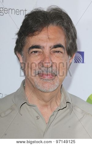 LOS ANGELES - JUN 8:  Joe Mantegna at the SAG Foundations 30TH Anniversary LA Golf Classi at the Lakeside Golf Club on June 8, 2015 in Toluca Lake, CA