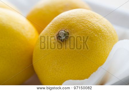 Lemon Fruits Close Up