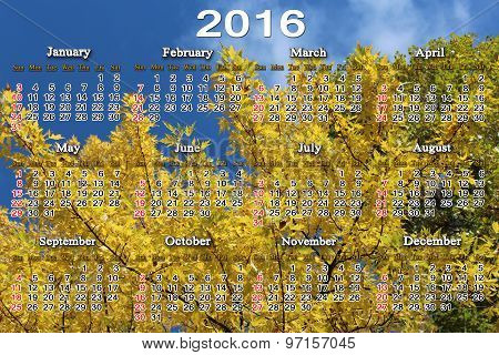 Calendar For 2016 On The Yellow Maple Leaves