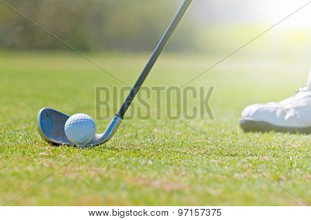 Golfer In A Golf Course
