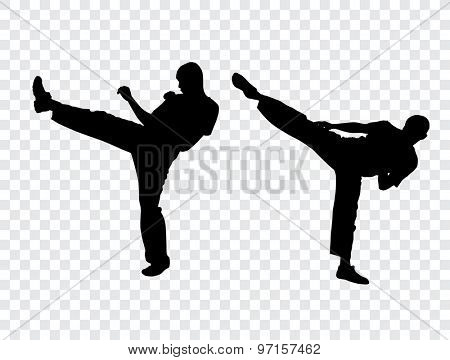 Karate warriors, vector