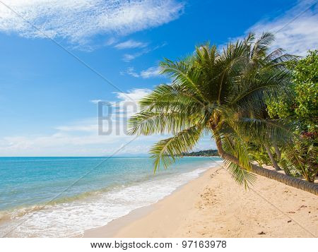 Tropical beach of Lamai in Koh Samui island in Thailand