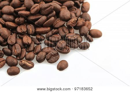 Fresh Coffe Beans