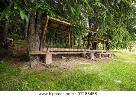 Resting Place Near The Forest