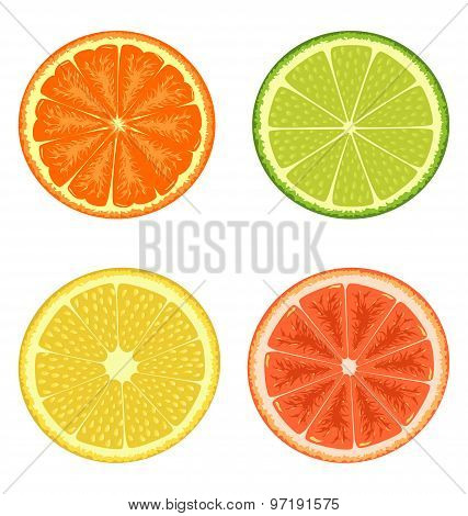Citrus Set Isolated On White
