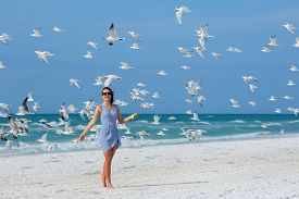 stock photo of flock seagulls  - Young beautiful woman watching the seagulls flying  - JPG