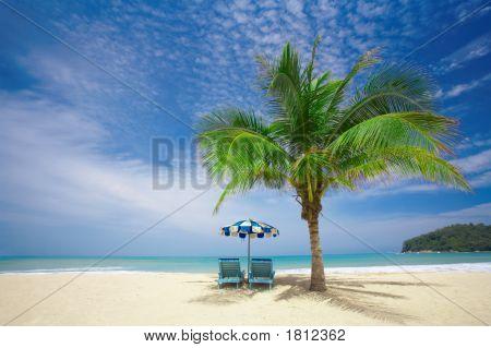Salão Palm