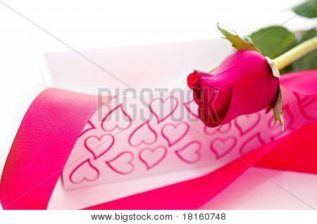 Pink Rose Gift