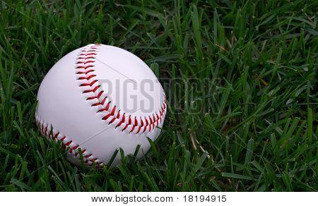 Beisebol sentado na grama