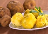 Peruvian Yellow Potato