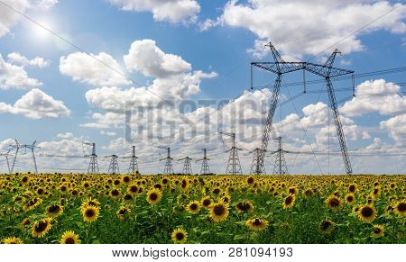 Highvoltage Power Lines Electricity Distribution