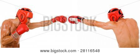 Front and back of a young boxer fighter on white background