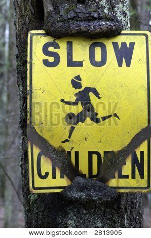 Slow Children