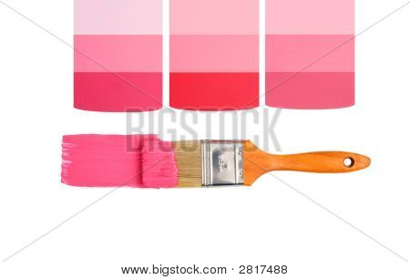 Designer Pinks