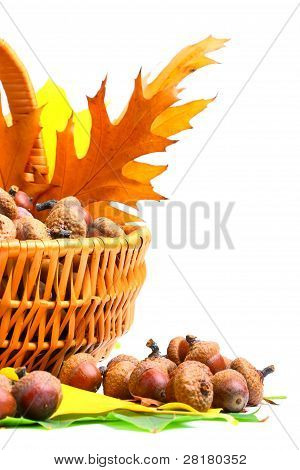 Autumn Wicker Basket