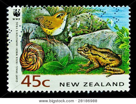 NEW ZEALAND - CIRCA 1991: A stamp printed in New Zealand, shows a giant snail, rock wren, frog, circa 1991