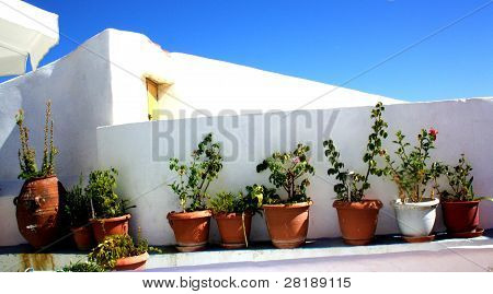 Flower pots on a Greek wall