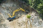 image of oversize load  - Forest destruction in the name of development - JPG