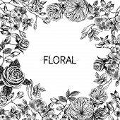 Garden Tender English Roses Frame. Vintage Botanical Hand Drawn Illustration. Spring Flowers Around  poster