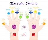 Palm Chakras. Symbols And Names Of The Main Chakras At The Corresponding Parts Of Both Hands. Isolat poster