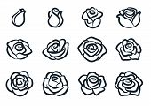 Black And White Rose Flower Vector Illustration. Simple Rose Blossom Icon Set. Nature, Gardening, Lo poster