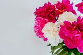 Frame Of Beautiful Fuchsia And White Peony Flower Bouquet On The White Background. Closeup, Flatlay  poster