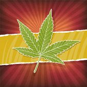 pic of rasta  - Background with cannabis leaf and rasta colors - JPG