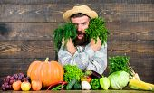 Excellent Quality Harvest. Man With Beard Proud Of His Harvest Wooden Background. Organic Fertilizer poster