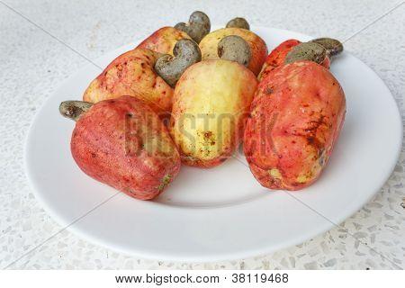Cashew-Frucht