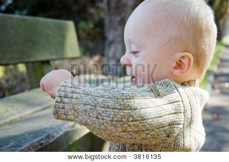 Cute Baby Boy Laughing Park Autumn
