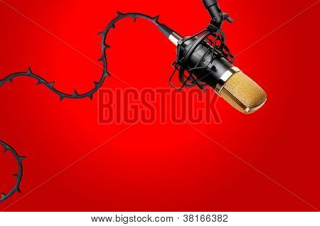Microphone With Thorns On The Wire