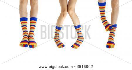 Legs In Socks