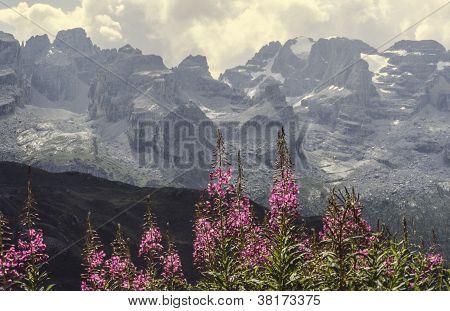 Dolomites Of Brenta
