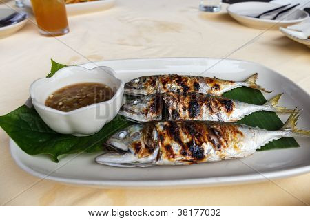 Grilled Scomber Fish