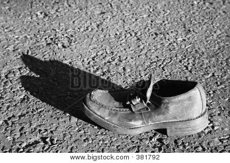 Shoe Trash