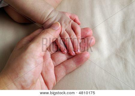 New Born Baby's Hand