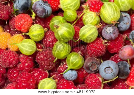 Fresh Berries