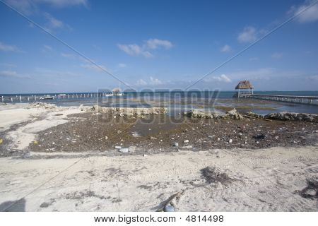 Pollution On The Shoreline
