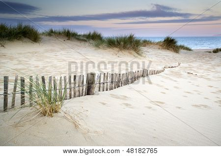Grassy Sand Dunes Landscape At Sunrise