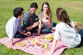 picture of nic  - Group Of Happy Young Friends On Vacation Enjoying Wine At Picnic - JPG