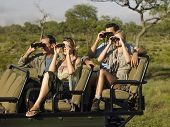 image of binoculars  - Group of tourists sitting in jeep and looking through binoculars - JPG