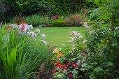 stock photo of horticulture  - View of a lush backyard lawn surrounded by colorful flowers - JPG