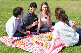 foto of nic  - Group Of Happy Young Friends On Vacation Enjoying Wine At Picnic - JPG