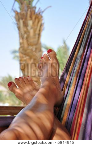 Woman Feet In Hammock - Landscape