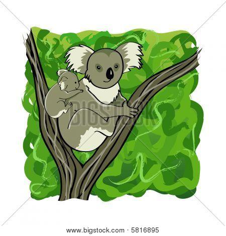 Koala family