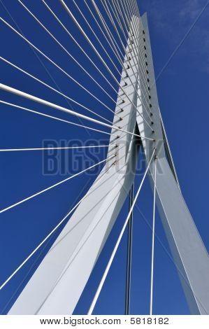 Erasmus Bridge In Rotterdam