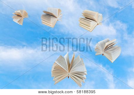 Few Book Fly In Blue Sky